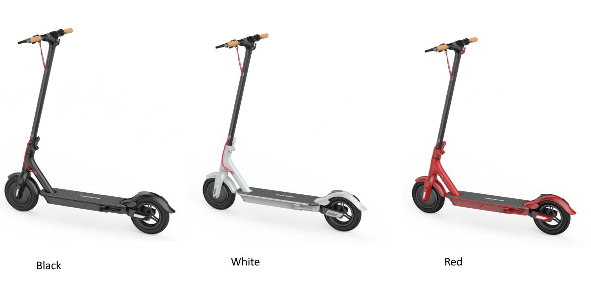 hình ảnh - Xe điện gập gọn Homesheel L1 Plus